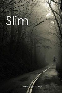 Slim cover